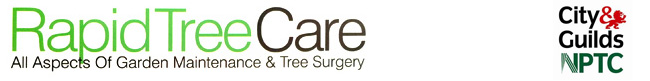 Rapid Tree Care Liverpool