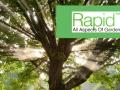 rapid-tree-care-felling-liverpool